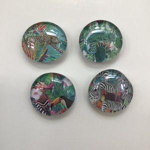 🌟Host Pick🌟 4 glass magnets